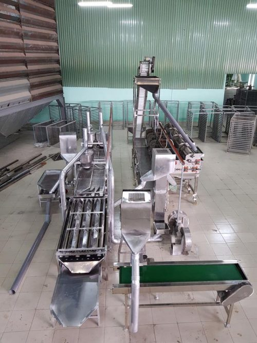 New automatic cashew shelling line