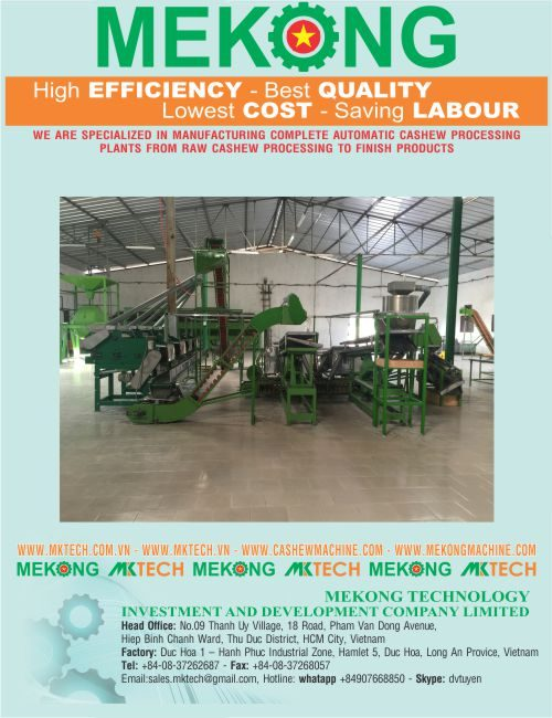 Raw cashew nut processing plant with input capacity 2000 kg-day